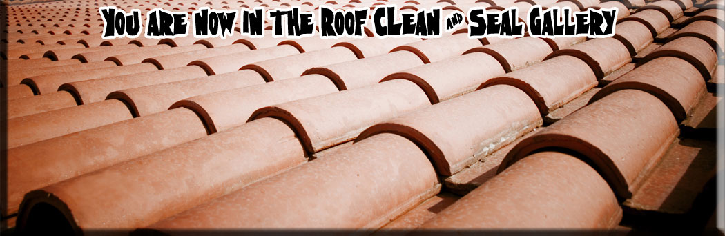 New Smyrna Beach Roof Cleaners