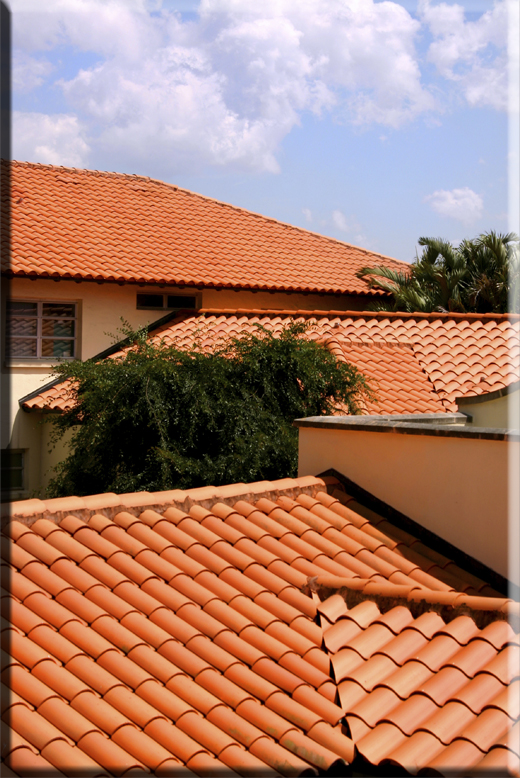 Roof Sealing Services